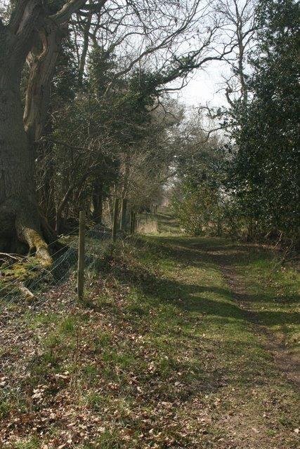 Track beside Thompson Common