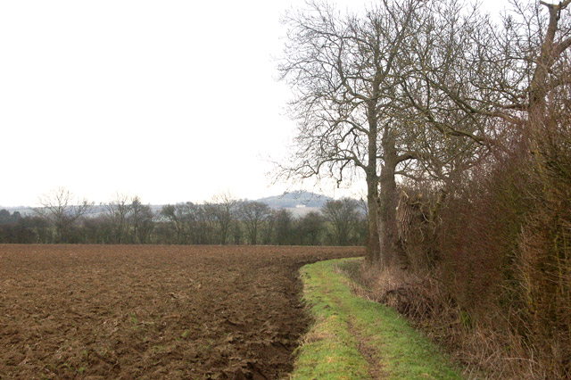 On the footpath from Upper Shuckburgh to Flecknoe