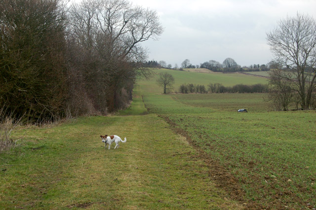 Farm track along headland south of Flecknoe