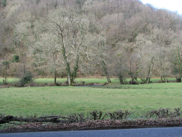 The floodplain of the River Bray