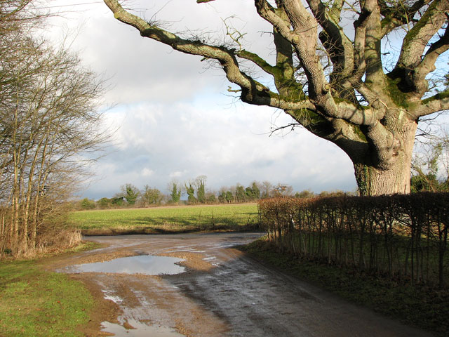 Approaching the lane to Middle Harling
