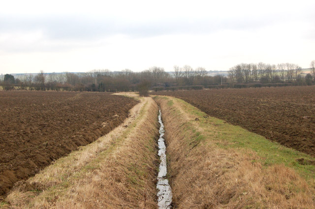 A well-maintained ditch south of Flecknoe