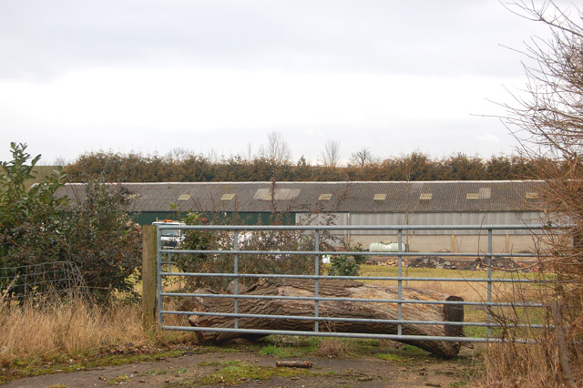 Gate into agricultural premises south of Flecknoe