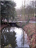 SJ3787 : Sefton Park - water course and stepping stones by John S Turner