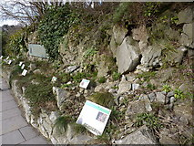 ST5673 : Rockery at Clifton Suspension Bridge by Peter Barr
