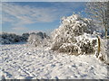 SU6352 : Snow on the open ground - South View by Given Up