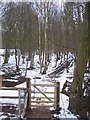 TQ8131 : Gate on the High Weald Landscape Trail by David Anstiss