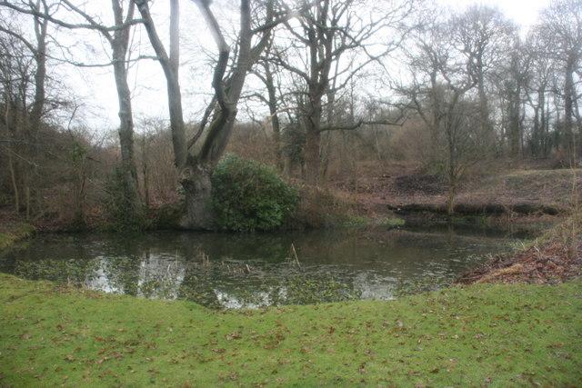 Pond, Waystrode Manor