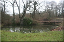 TQ4540 : Pond, Waystrode Manor by N Chadwick