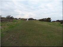 SZ0481 : Ballard Down : Grass Path & Trig Point by Lewis Clarke