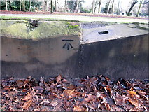 SJ3787 : Sefton Park - perimeter wall bench mark #10 by John S Turner