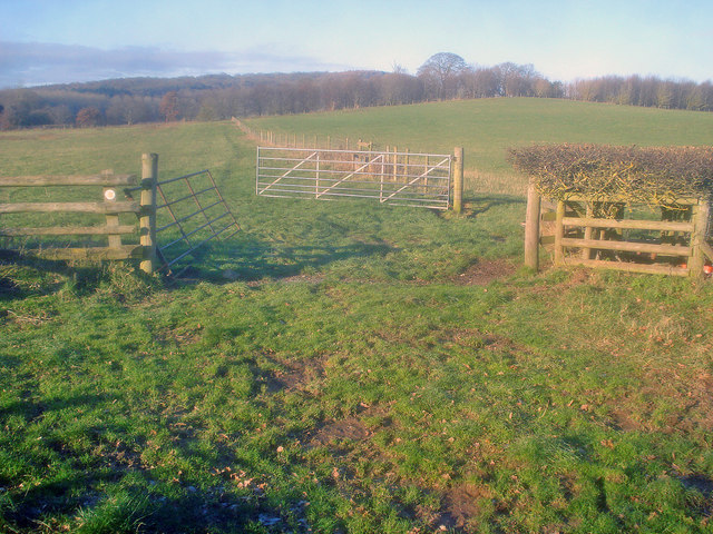 Farmland near Pepper Mill
