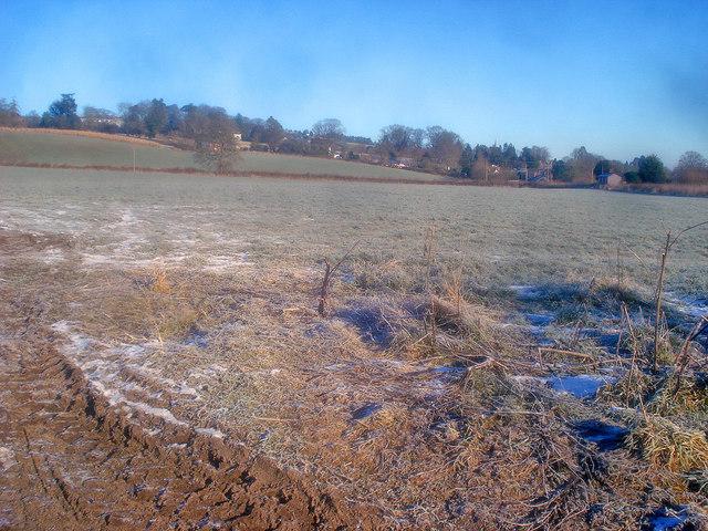 Fields west of Kington
