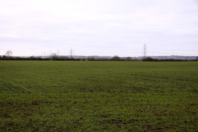 Field near Thomley Hall Farm