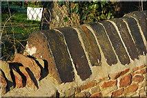 ST6771 : Black Slag Coping Stones by Gordon James