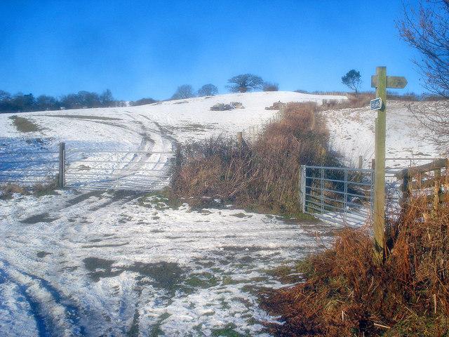 Snowy farmland at Upper Hergest