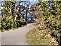 SH5571 : Coastal path by David Dixon