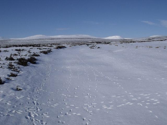 Allt Geallaidh north-west of Carn nan Seabhag