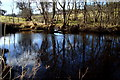G9379 : River Eske at Drumlaght by louise price
