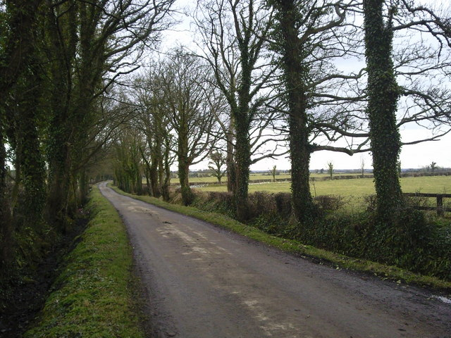 Country Lane North County Dublin