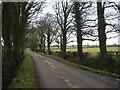 O0656 : Country Lane North County Dublin by C O'Flanagan