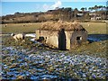 NZ0999 : Pillbox at Pauperhaugh by David Clark