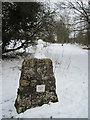 SJ2530 : Skyline Map cairn at entrance to Oswestry Racecourse by John Firth