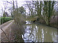 TM1457 : Moat & Bridge near All Saints Church by Adrian Cable