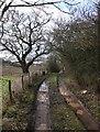 SP2357 : Green Lane to Hatton Rock by David P Howard