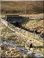 NT3343 : Glentress Burn by Richard Webb