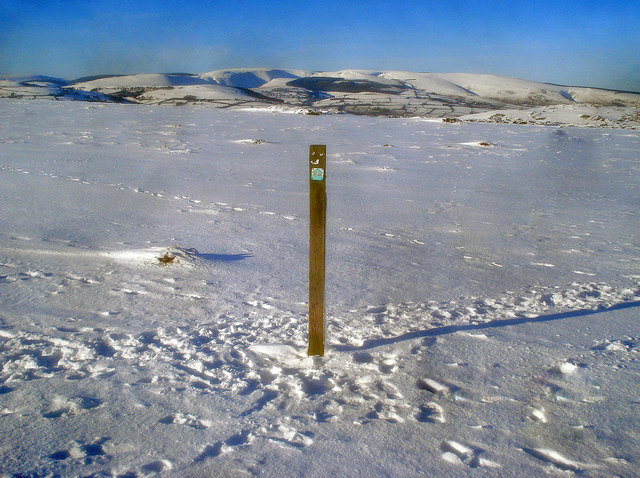 Way marker post on the Hergest Ridge