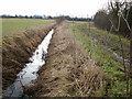 TL4364 : Water-filled ditch alongside Gun's Lane by Peter
