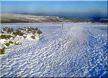 SO2656 : Offa's Dyke Path crosses the old racecourse by Trevor Rickard