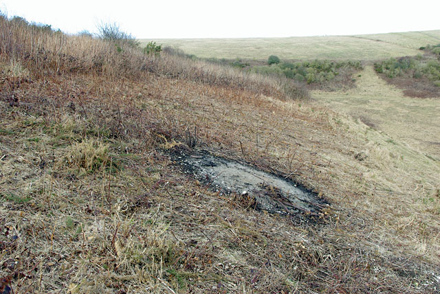 Castle Hill NNR - scrub clearance