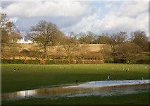 TQ2794 : Oak Hill Park by Martin Addison