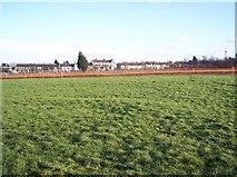 TQ7668 : Great Lines - Looking towards Marlborough Road by David Anstiss