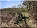 SP2059 : Kissing gate on footpath to Bushes Farm, Snitterfield by David P Howard