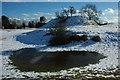 SO7937 : Motte and bailey, Castlemorton by Philip Halling