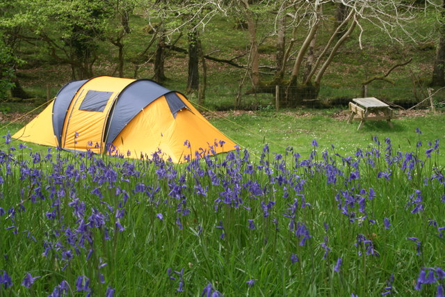 Dinas camping