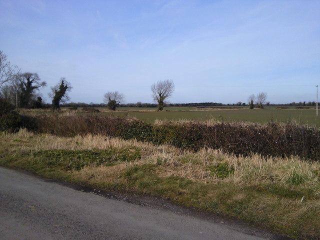 Rural landscape, Fidorfe, Co Meath 2