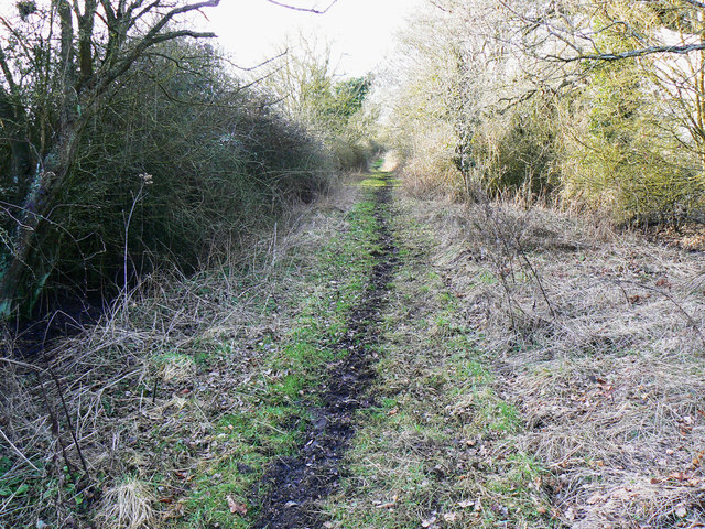 Bridleway to Malmesbury Road from Chelworth Lane, near Cricklade