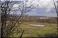 ST1075 : Dew pond - Coedarhydyglyn by Mick Lobb