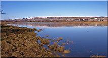 NS4870 : Newshot Island Inlet, River Clyde by wfmillar