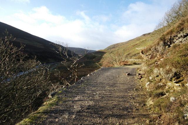 Track Up Landgen Valley