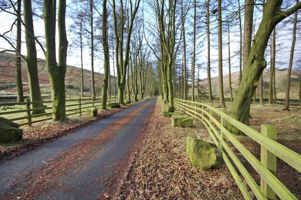 Road To Langden Brook Waterworks