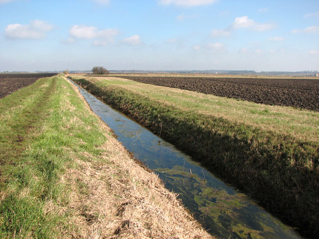 A ditch in Downham Fen