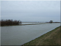 TL4176 : Rising flood waters - The Ouse Washes near Earith by Richard Humphrey