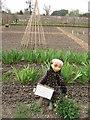 TL3351 : An odd scarecrow by Sandy B