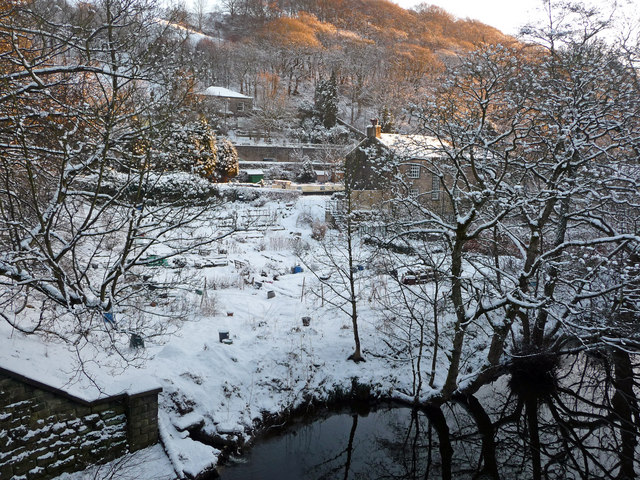 Allotments between River Calder and the Rochdale Canal, Mayroyd