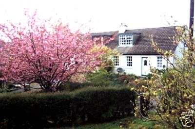 Cosy Cottage  Eredine Loch Awe